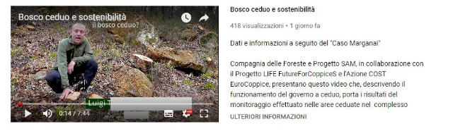 bosco ceduo video